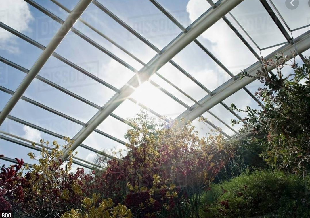 High-Quality Greenhouse Fabric vs Greenhouse Film